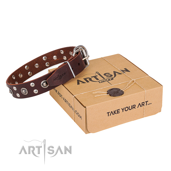 Durable traditional buckle on leather collar for your impressive doggie