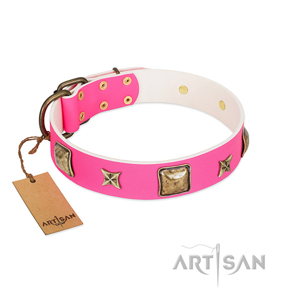 Full grain natural leather dog collar of reliable material with unusual studs