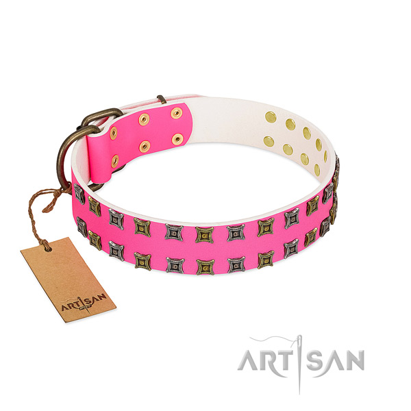Full grain leather collar with stylish studs for your pet