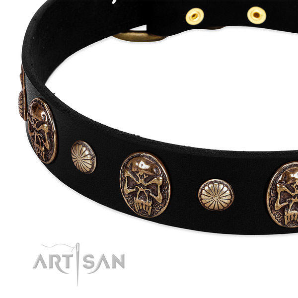 Leather dog collar with impressive studs