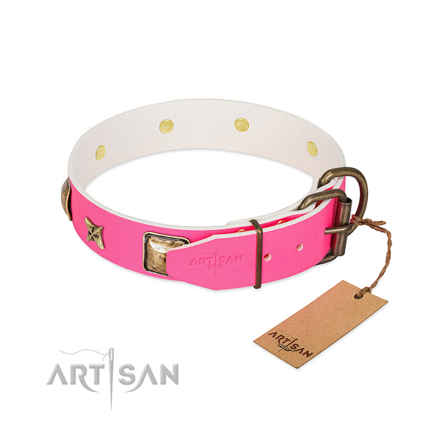 Durable fittings on natural genuine leather collar for everyday walking your pet
