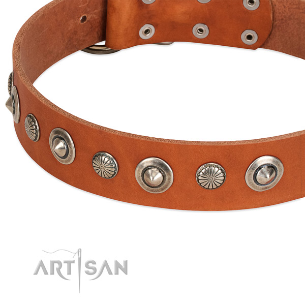 Exceptional embellished dog collar of top quality leather
