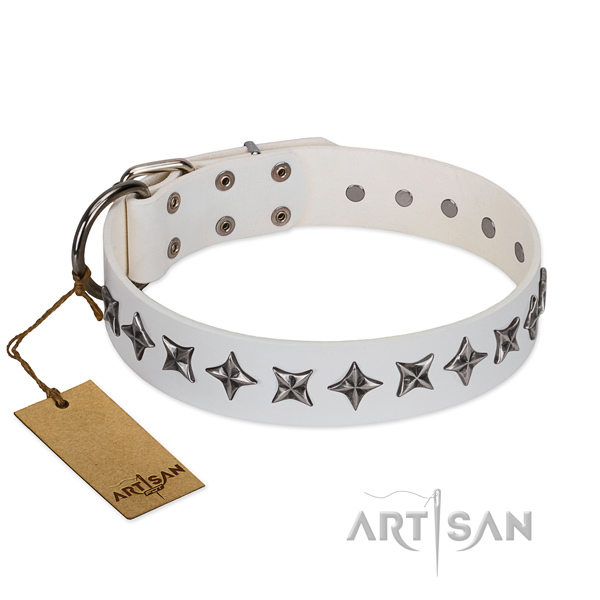 Walking dog collar of reliable genuine leather with decorations