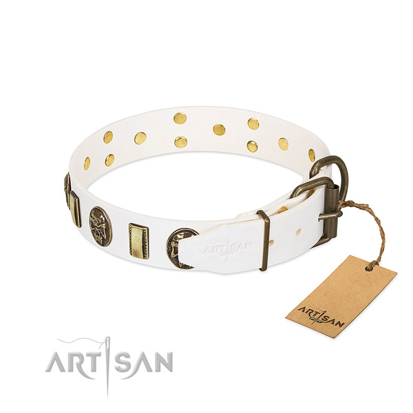 Rust-proof buckle on genuine leather collar for basic training your four-legged friend