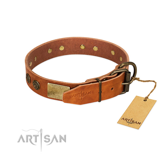 Corrosion resistant hardware on genuine leather collar for walking your pet