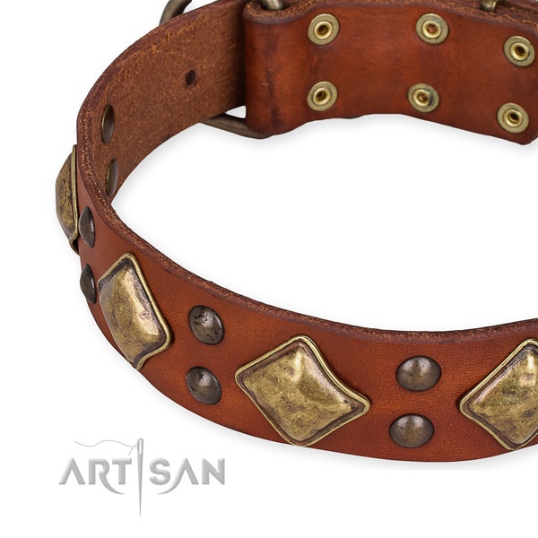 Full grain genuine leather collar with strong fittings for your attractive canine