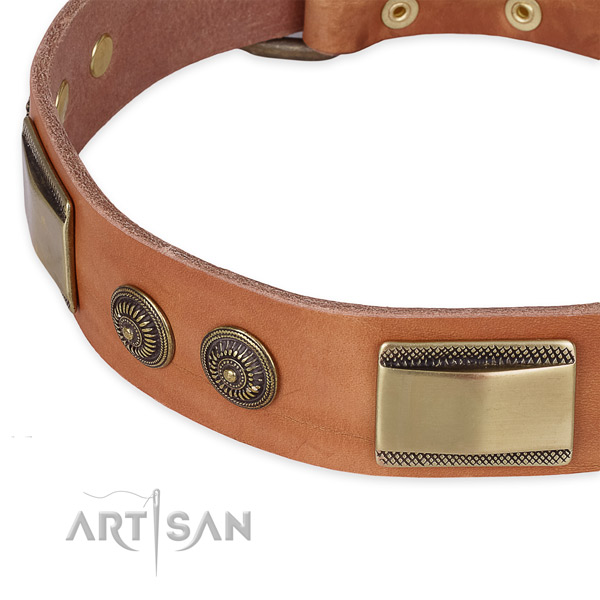 Corrosion resistant embellishments on leather dog collar for your pet