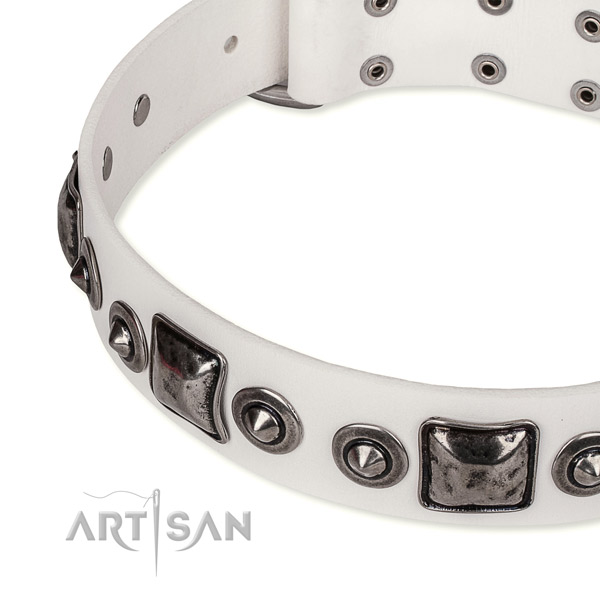 High quality leather dog collar created for your impressive doggie