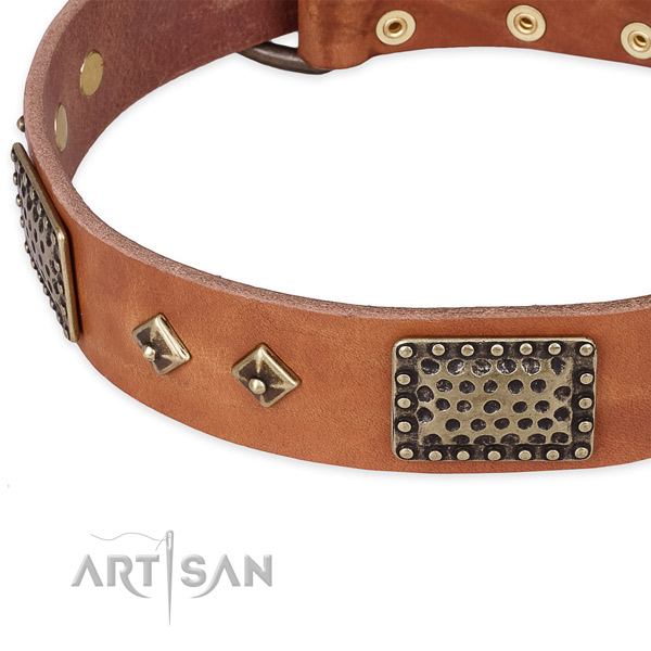 Corrosion proof traditional buckle on natural leather dog collar for your canine