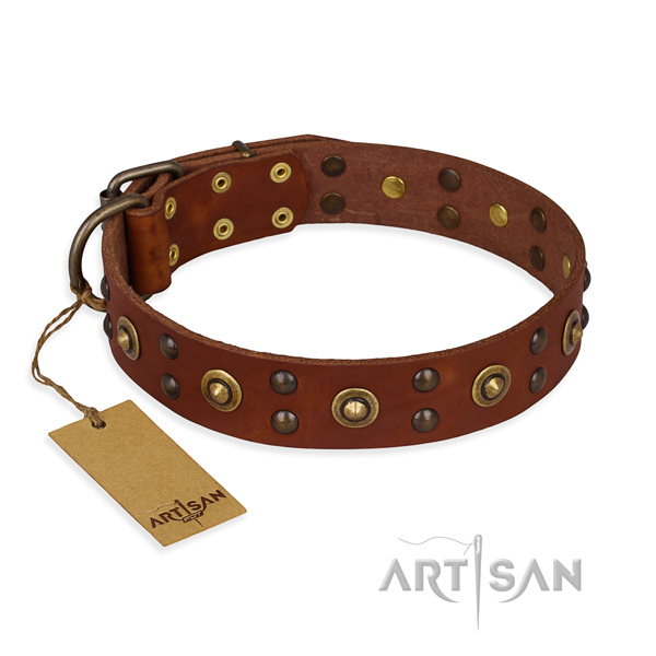 Top notch genuine leather dog collar with reliable traditional buckle