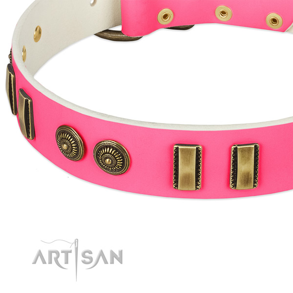 Strong fittings on leather dog collar for your dog