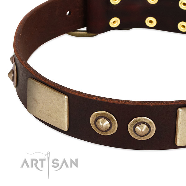 Durable adornments on genuine leather dog collar for your four-legged friend