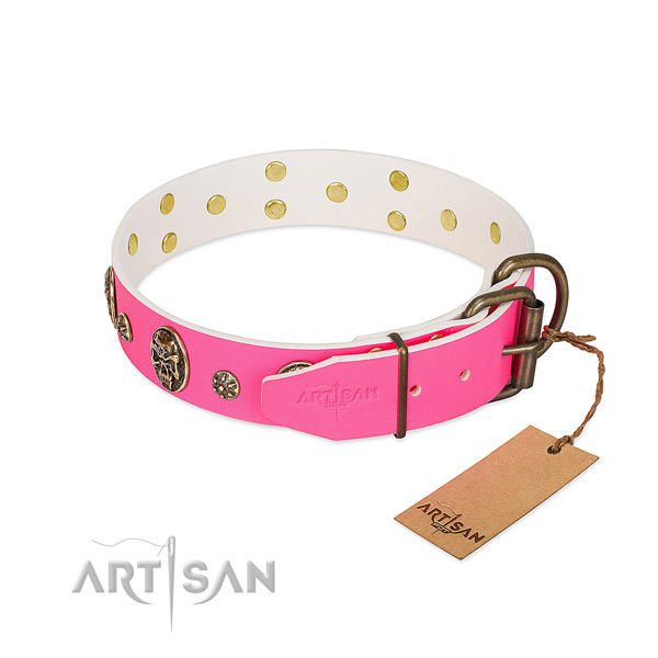 Corrosion proof traditional buckle on full grain natural leather collar for stylish walking your doggie