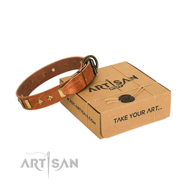 Fancy walking gentle to touch full grain natural leather dog collar with adornments