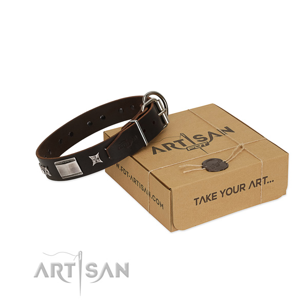 Stunning collar of leather for your handsome canine