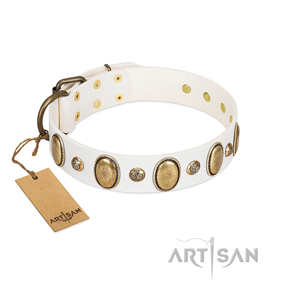 Full grain natural leather dog collar of top rate material with top notch studs