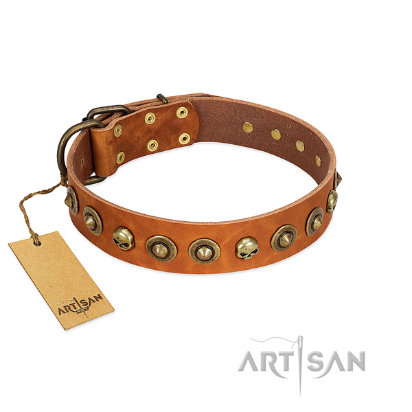 Leather collar with awesome adornments for your dog