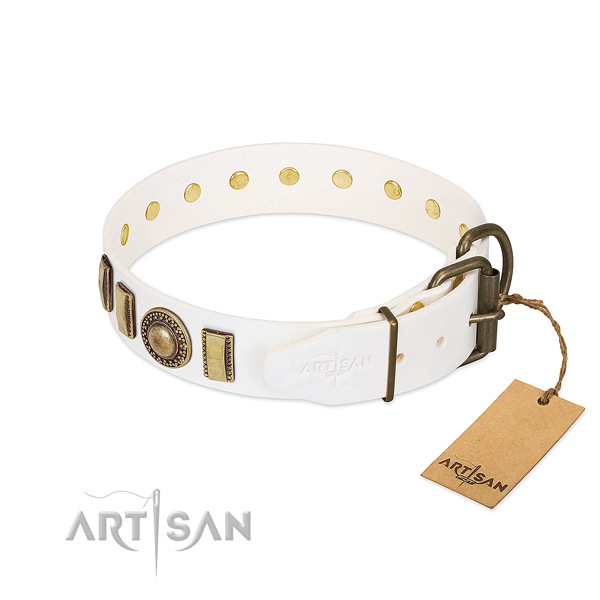 Amazing full grain leather dog collar with durable traditional buckle