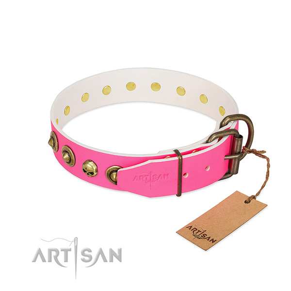 Leather collar with top notch adornments for your canine