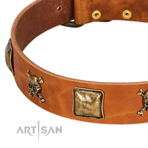 Impressive embellishments on full grain genuine leather collar for your dog