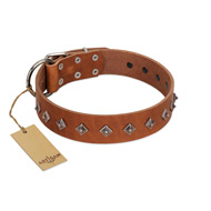 """Broadway"" Handmade FDT Artisan Tan Leather Cane Corso Collar with Dotted Pyramids"
