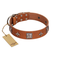 """Lucky Star"" FDT Artisan Tan Leather Cane Corso Collar with Silver-Like Embellishments"