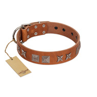 """Antique Figures"" FDT Artisan Tan Leather Cane Corso Collar with Silver-like Engraved Plates"