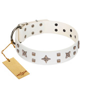 """Starry Heaven"" Designer Handcrafted FDT Artisan White Leather Cane Corso Collar with Stars and Studs"