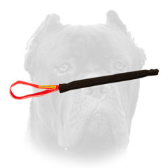 Quality Cane Corso puppy training tug with comfy handle