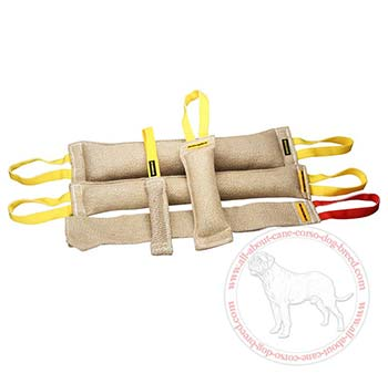 Set of Jute Bite Items for Cane Corso Training