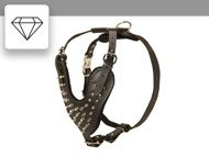 Spiked Studded Dog Harness