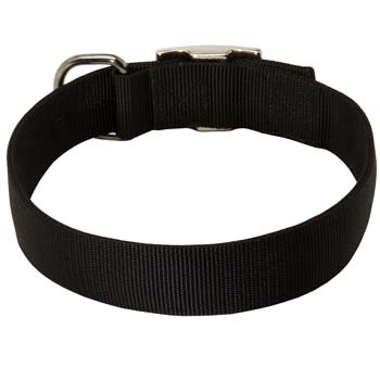 All Weather 2 ply nylon collar for Cane Corso