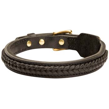 Well-made leather dog collar for Boxers