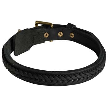 Cane Corso leather dog collar with leather braid