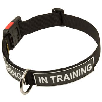 Demandable nylon dog collar for large strong dogs