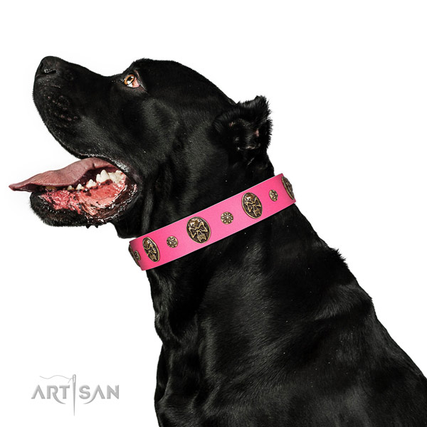 Comfortable dog collar handmade for your beautiful doggie