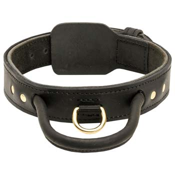 Quick Grab Cane Corso Collar with Durable Leather Handle