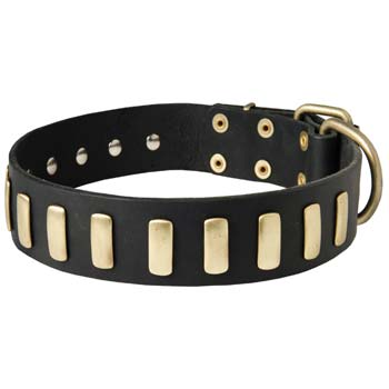 Extra Wide Leather Cane Corso Collar
