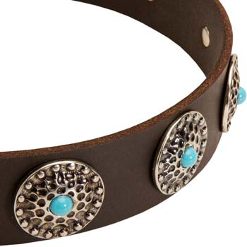 Cane Corso decorated leather dog collar