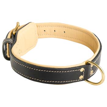 Cane Corso collar leather Nappa padded