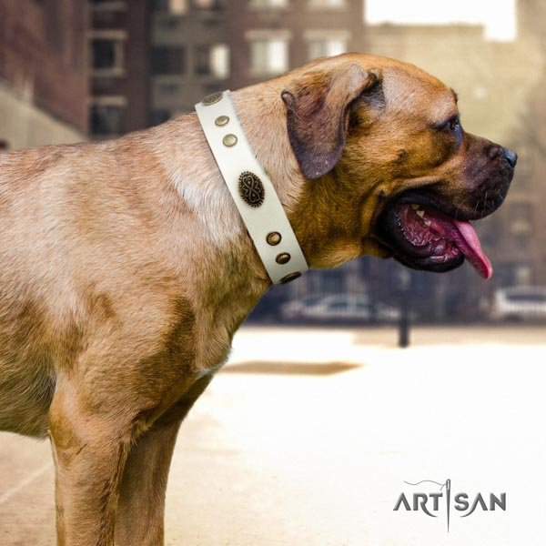 Cane Corso embellished collar made of quality full grain genuine leather