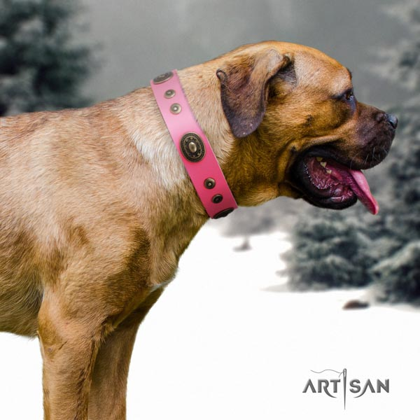 Cane Corso reliable embellished natural genuine leather collar