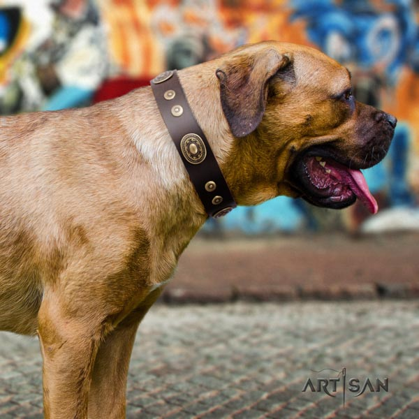Cane Corso strong decorated full grain genuine leather collar