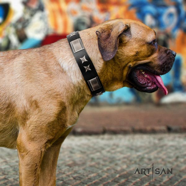 Cane Corso full grain leather collar with reliable fittings