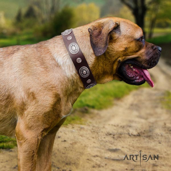 Cane Corso strong decorated natural genuine leather collar
