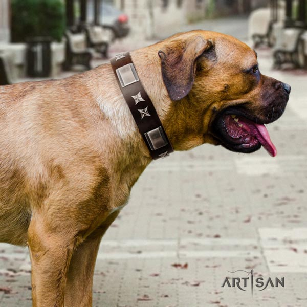 Cane Corso full grain leather collar with rust-proof fittings
