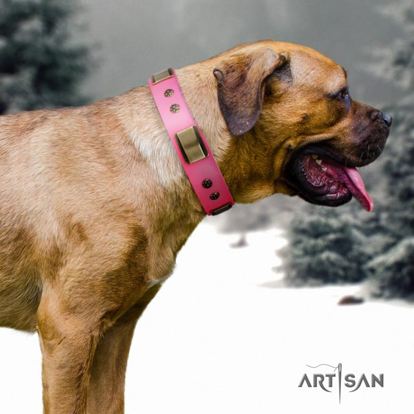 Cane Corso decorated collar made of flexible full grain genuine leather