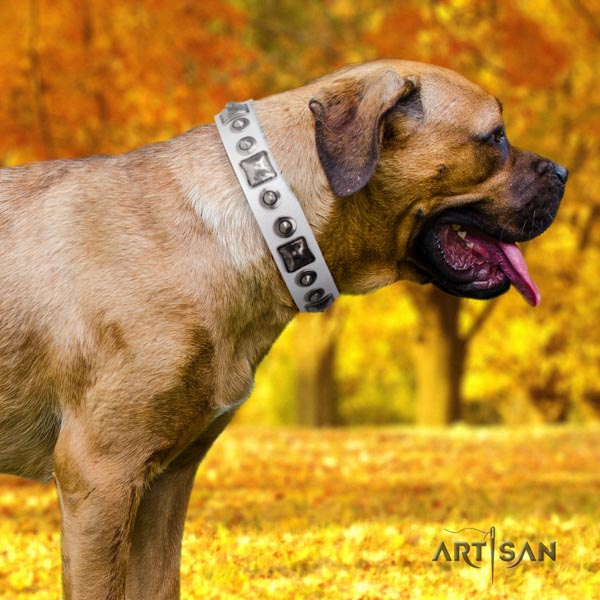 Cane Corso soft to touch adorned full grain natural leather collar