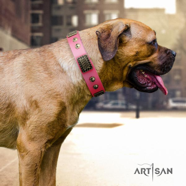 Cane Corso embellished collar made of high quality full grain natural leather