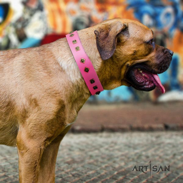 Cane Corso decorated collar made of reliable full grain natural leather